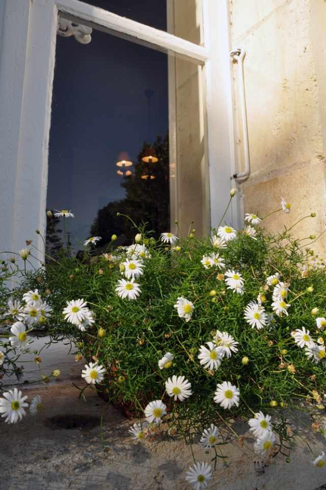 Domaine de l 39 ermitage chambre d 39 h te berry bouy cher 18 - Menetou salon domaine de l ermitage ...