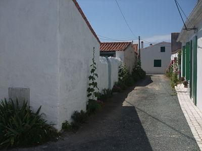 Petite maison jardin clos maison villa saint denis d 39 oleron charente maritime 17 - Petit jardin en pot saint denis ...