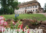 Photo Château de grunstein
