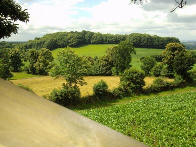 Cabane dans les arbres vue sur le mont st michel chambre d 39 h te montgothier manche 50 - Chambre hote dans les arbres ...