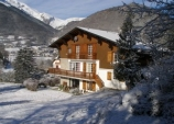 Photo Le chalet-bizon