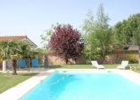 Photo Le clos des pins- le pin paras ...